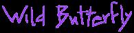 wild butterfly handdrawn logo